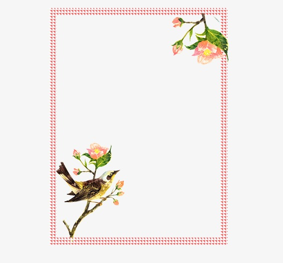 Flower Border, Flowers, Birds And Insects, Frame PNG and ...