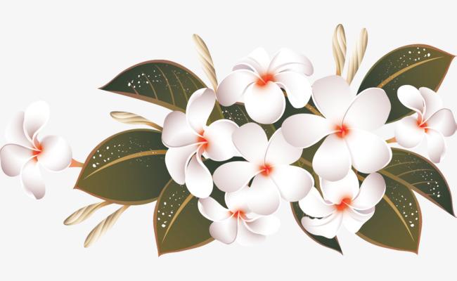 Bunga Corak Hiasan Dinding Jj20 Pera Png Dan Seni Klip