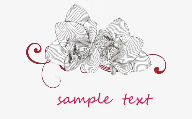 Flower Design Icon Flowers Black And White Red Png And Psd File