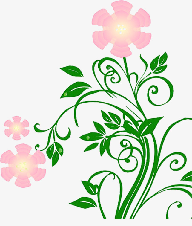 Fleur De Vie Des Plantes Pot Les Fleurs Image Png Pour Le