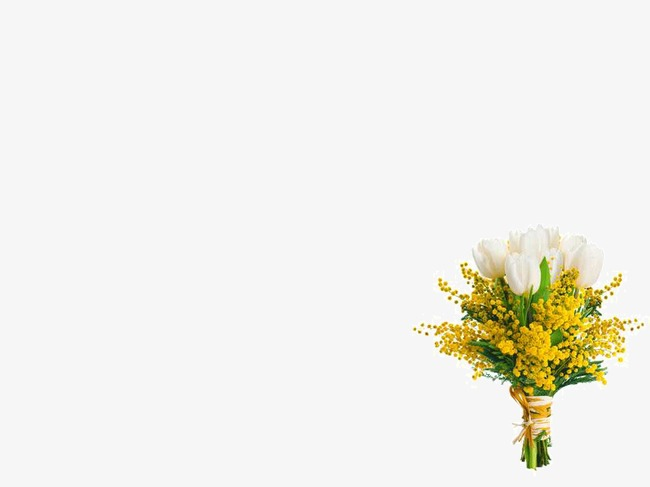 Flowers Background Ppt Template Flowers Ppt Background Ppt