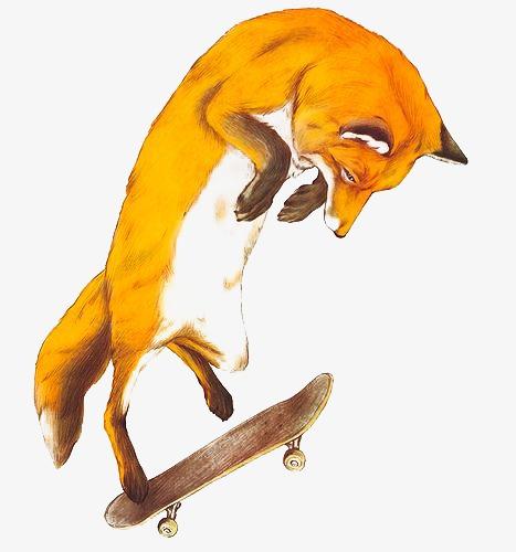 Mon Voisin du dessus - Page 15 Pngtree-fox-png-clipart_2775563
