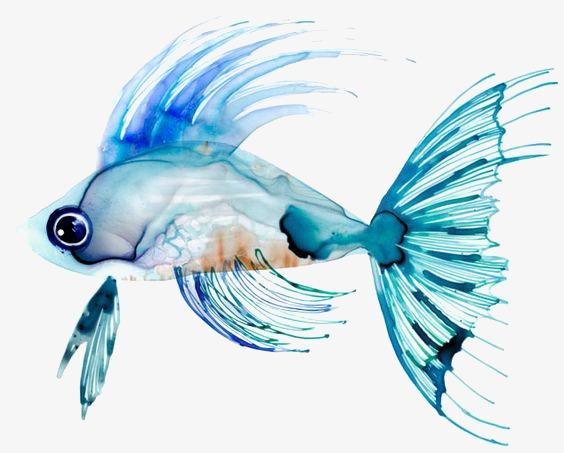 Ikan Emas Tangan Dicat Ikan Mas Kartun Ikan Mas Ikan Kecil Imej Png
