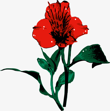 Magnifique Fleur Rouge Les Fleurs Vecteur Des Plantes Png Et Vecteur