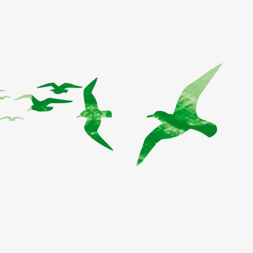 Image result for green birds flying
