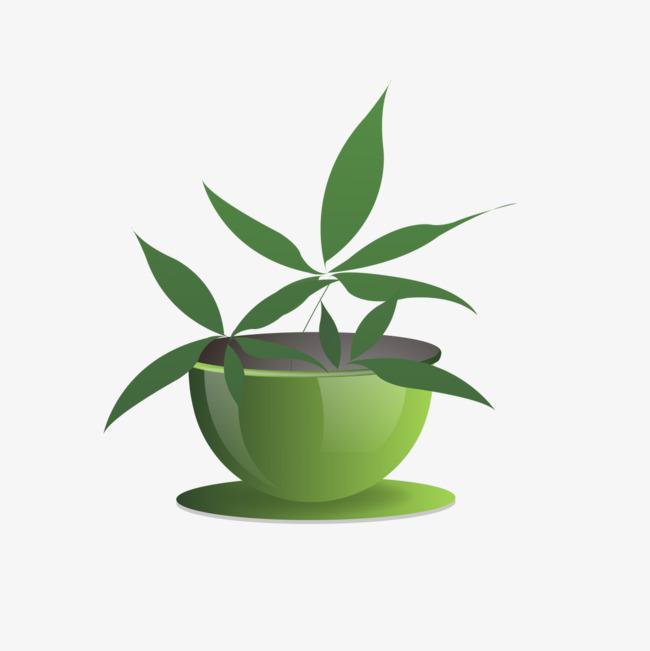 mod u00e8le de dessin anim u00e9 de plantes vertes une plante verte