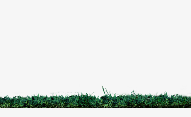 Il Prato Verde Prato Di Confine Di Consistenza Verde Il Prato Il