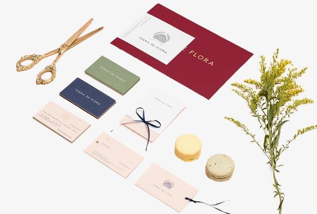 De L Herbe Verte Rouge Album Biscuits Cartes Visite Or Donuts Creative A Etranger En Matiere Ciseaux Gratuit PNG Et Clipart