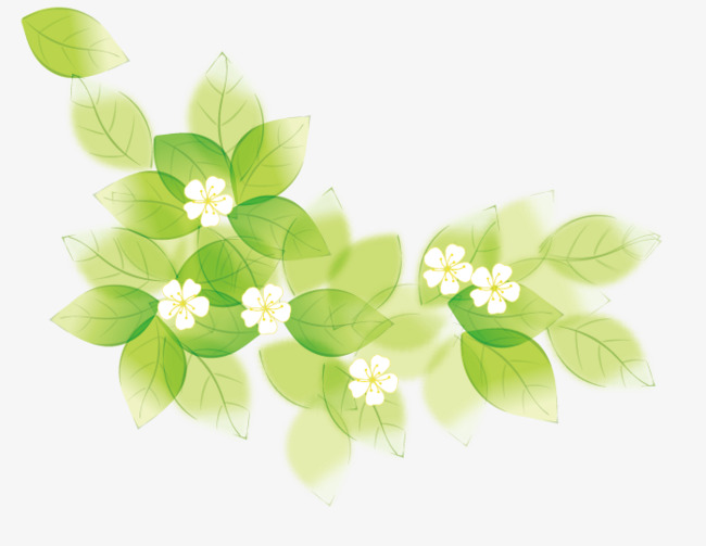 green leaves letterhead lace vector material green leaves