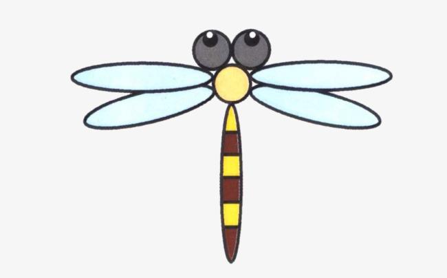 Coloreado A Mano Libélula Pintado A Mano Color Dragonfly Imagen PNG ...