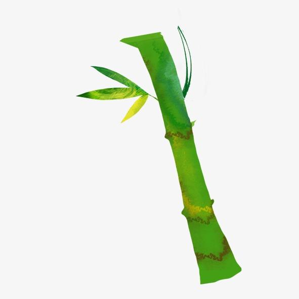 Pintado A Mano De Bambu Seco Pintado A Mano Verde Tallo De Bambu - Bambu-seco