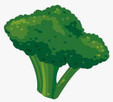 cartoon desenho legumes e brócolis cartoon pintados à mão produtos