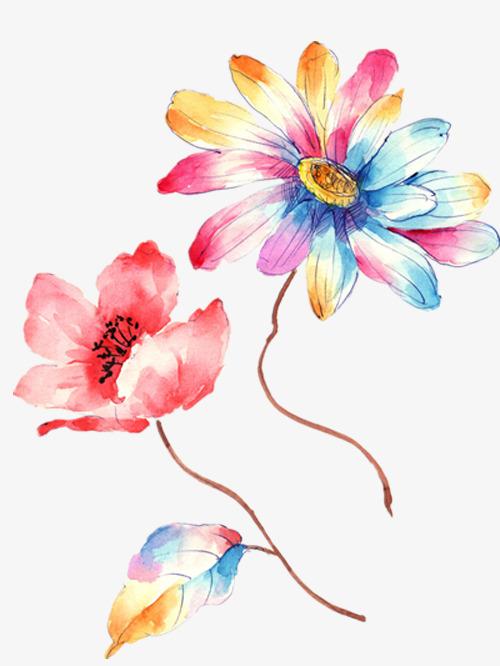 la couleur des fleurs belles fleurs jolies fleurs couleur de fleur image png pour le. Black Bedroom Furniture Sets. Home Design Ideas