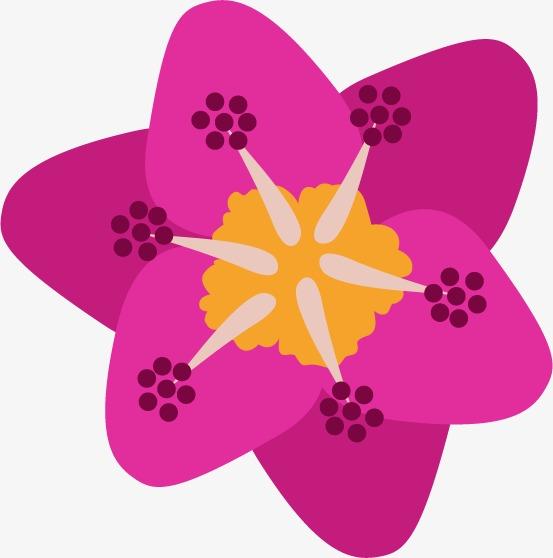 Pintado A Mano De Flores De Dibujos Animados La Primavera Flor