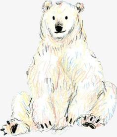 Pintado A Mano De Oso Polar Pintado A Mano De Oso Polar Linea Dibujo