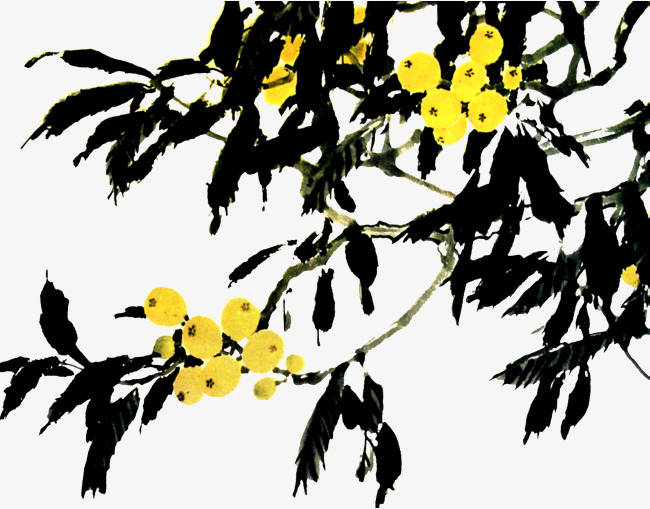 Ink Painting Loquat Loquat Summer Fruit Chinese Style Image