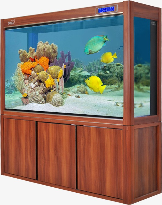 Large Fish Tank Fish Clipart Product Kind Aquarium Png Image And