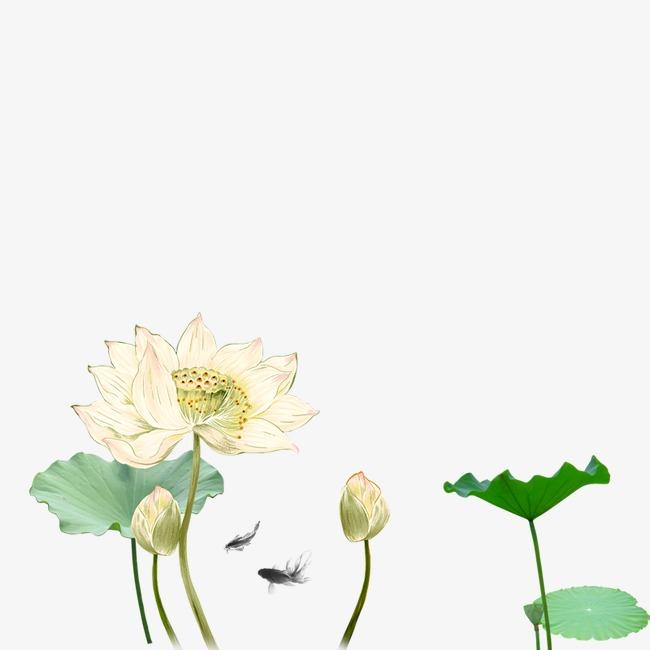 Lotus Daun Teratai Kartun Imej Png Dan Clipart Untuk Muat Turun Percuma