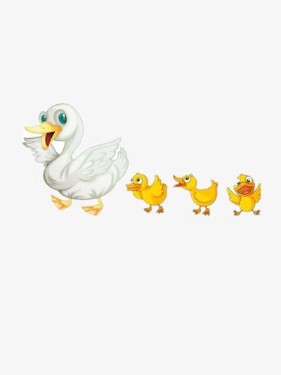 les canards et sa m u00e8re canard maman canard canard jaune