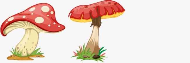Mushroom Color Fungus Lovely Cartoon Mushroom Color