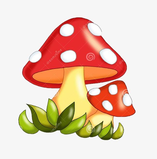 joli dessin de couleur de champignons champignons mignon