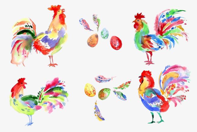Dicat Rooster Gambar Ayam Jantan Cock Warna Tangan Dicat Fail Png