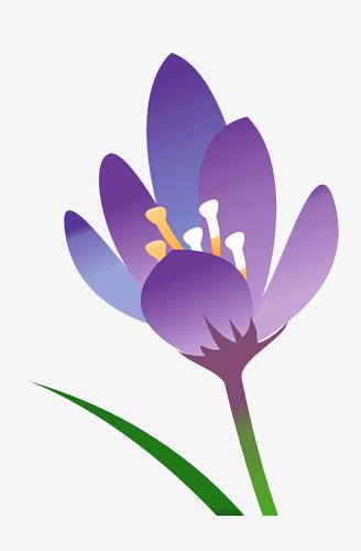 fleur de dessin anim u00e9 violet violet les fleurs dessin