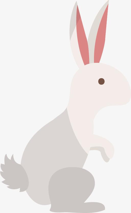 El Patron De Conejo Conejo De Dibujos Animados Animal Bosque PNG y ...