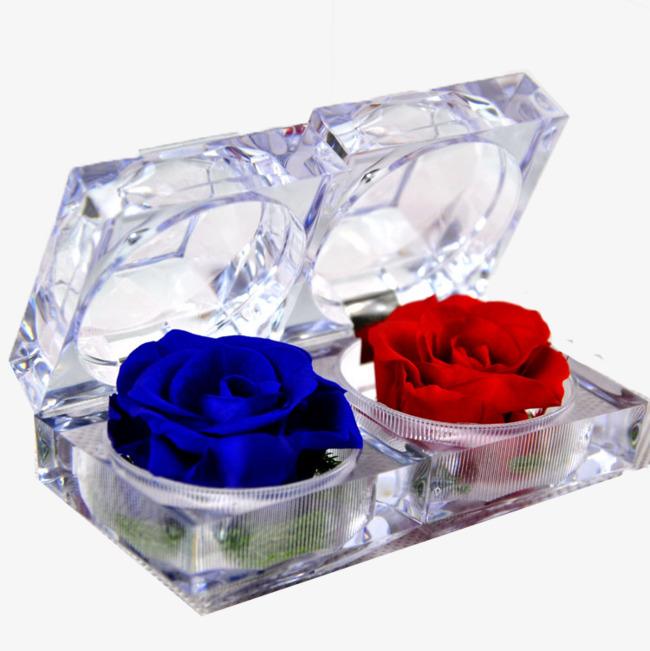 Rosas Rojas Y Azules Caja De Cristal Flores Regalo Imagen Png Para