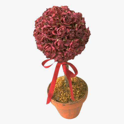 plutôt cool Couleurs variées grand assortiment Rose Rouge Roses Rouge Un Pot De Fleurs Image PNG pour le ...