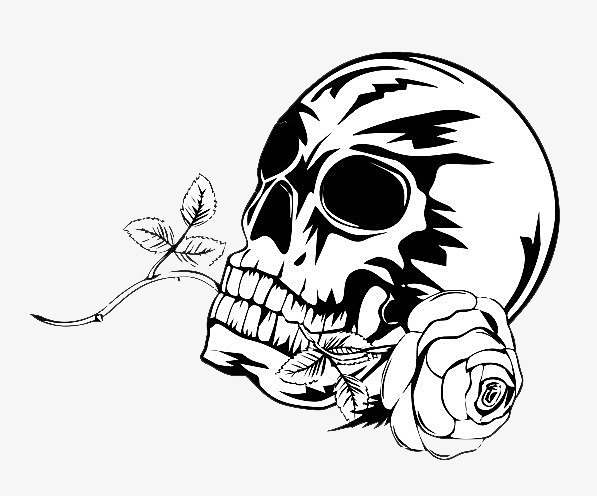 Rendering Quality Hand Painted Rose Bone Image And Clipart
