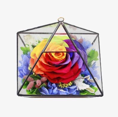 Les Petales De Rose Multicolore De Feuilles Vertes Roses Petales De