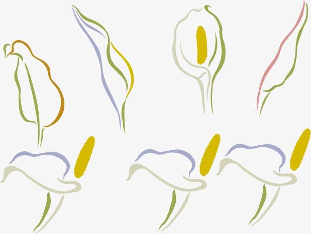 La Simplicité Des Fleurs Simple Dessin Peint à La Main Image Png