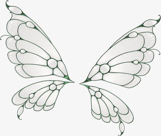 Aile De Papillon Dessin le dessin à papillon simple des ailes le papillon gris image png
