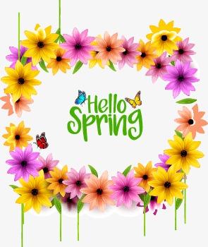 Spring Flowers Border Spring Vector Border Vector Spring Element