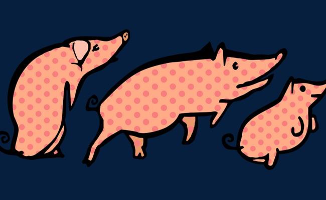 os três porquinhos o porquinho 猪素材 desenho de porco png imagem