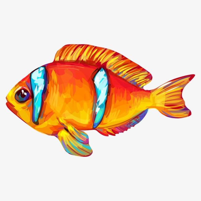 Vektor Berwarna Ikan Emas Vektor Ikan Mas Kartun Ikan Mas Warna Ikan