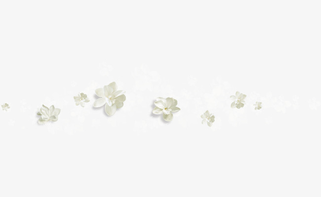 Flores Blancas Flotando Flores Flores Silvestres Estampado De Flores
