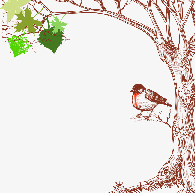 mort d oiseaux de dessin graphique vectoriel arbre mort