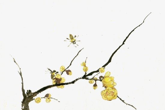 Yellow Flowers Hand Painted Tree Branches Tree Clipart Branches