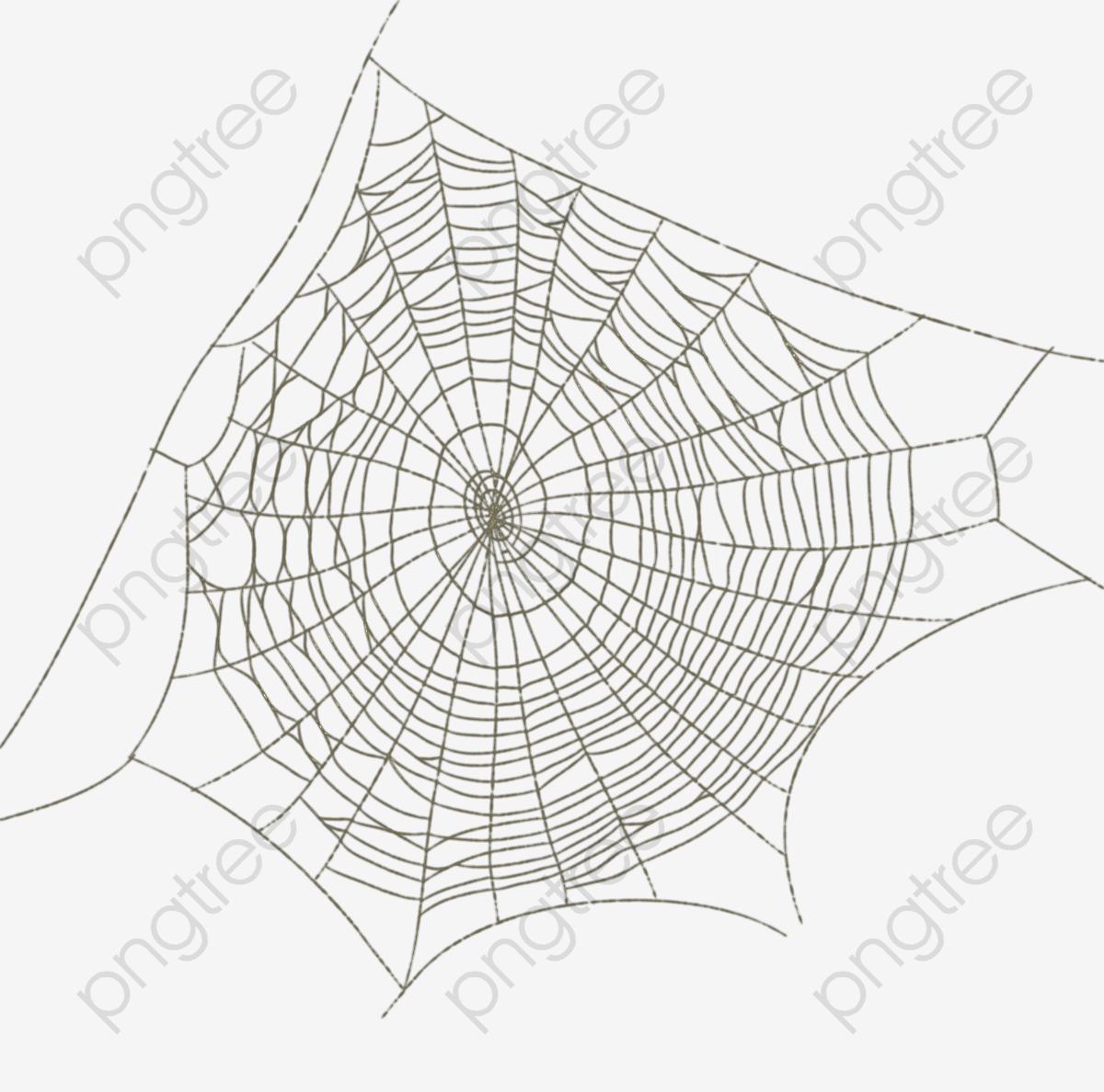 Fotos De Desenhos De Teia De Aranha De Teia De Aranha Sketch A