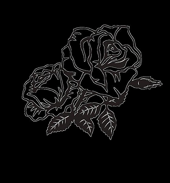 Deux Fleurs Roses En Noir Et Blanc Garniture Dangle Noir