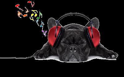Listen To Music Dog, Music Clipart, Dog Clipart, Black Dog ...
