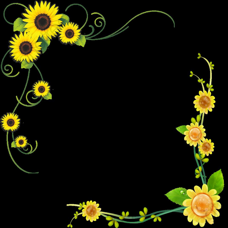 Sunflower, Sunflower Clipart, Decorative Borders, Flowers ... (1071 x 1073 Pixel)