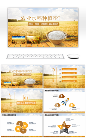 42 rice powerpoint templates for unlimited download on pngtree ppt template for rice grain harvest in agricultural rice toneelgroepblik Gallery