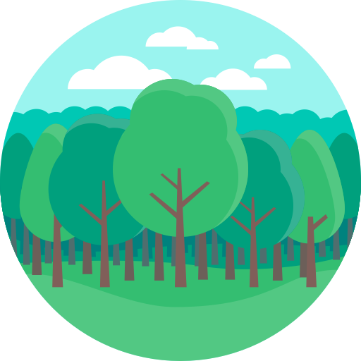 Woods, Nature, Landscape Icon