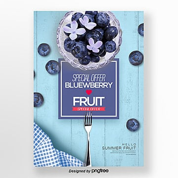 summer blueberry fresh fruit theme poster Template