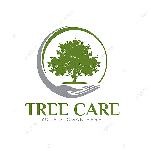 Oak Tree Logo Designs Template For Free Download On Pngtree