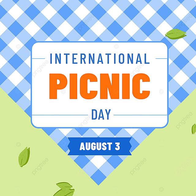 blue plaid tablecloth picnic day snsbanner