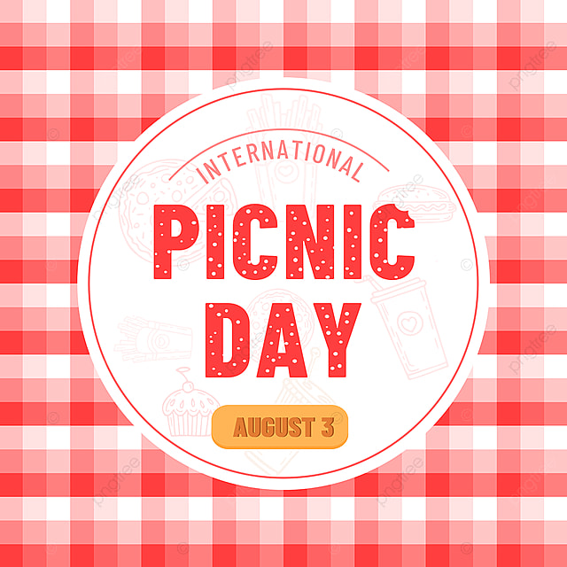 red plaid simple picnic day snsbanner